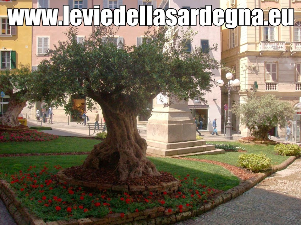 Le Vie della Sardegna il Portale del Turismo nell'isola partendo da Sassari.