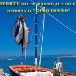 """Carloforte dal 30 maggio al 2 giugno 2014 ritorna il """"Girotonno"""" alla sua 11^ edizione."""