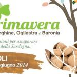 Primavera a Irgoli: 21 -22 Giugno 2014