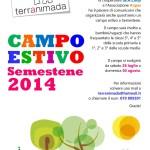 Terranimada 2014: un campo estivo a Semestene per bambini e ragazzi.