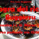 Sagra dei ricci di mare a Buggerru domenica 1 e 15 Marzo 2015 Area Portuale.