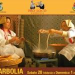 Sagra della Zipola Narbolia 28 febbraio e domenica 1 marzo 2015.
