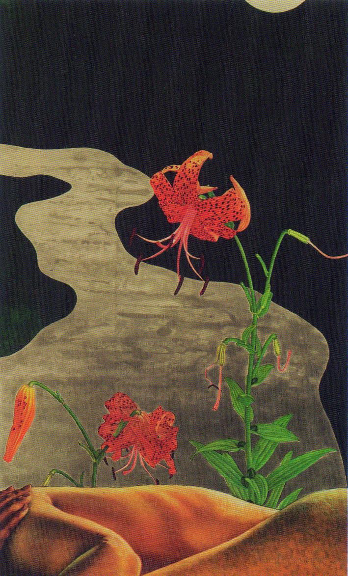 Splendori dal Giappone Mostra a Oristano visitabile fino ad Aprile 2015