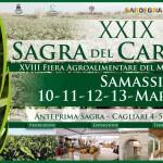 La XXIX Sagra del Carciofo di Samassi vi aspetta dal 10 al 13 marzo 2016. Organizzata dall'amministrazione comunale e in collaborazione fra gli altri con l'Agenzia Laore Sardegna.