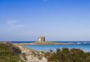 Ajò in pullman nel primo weekend di ottobre del 2016 vi porta all'Asinara e non solo! Visita alle Grotte di Alghero e il Parco avventura Le Ragnatele.