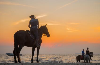 Vacanza Cavallo Horse Country Resort Congress & SPA Arborea (Or)