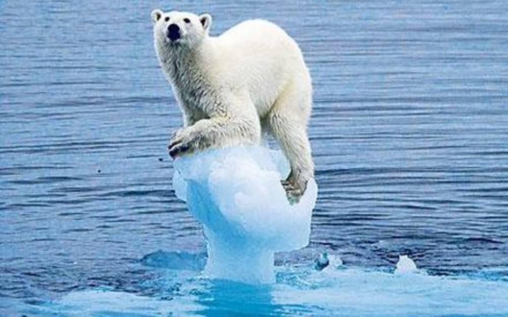 Questionario cambiamenti climatici