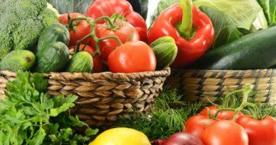 Sviluppo d'impresa con l'agricoltura Bio ad Alghero, protocollo d'intesa per un settore strategico.