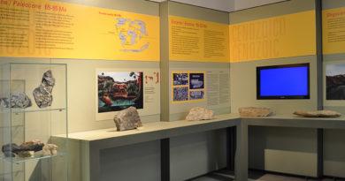 Il Museo PalaeoAmbienti Sulcitani-PAS E .A. Martel presso la Grande Miniera di Serbariu a Carbonia partecipa alla Settimana del Pianeta Terra 2016.