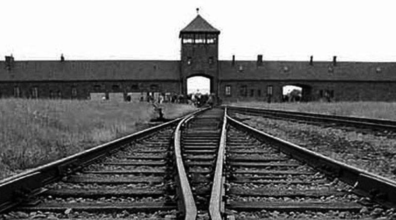 Buchenwald di Massimiliano Rosa. I ricordi e le memorie di un sardo sopravvissuto all'Olocausto, raccolte dal nipote lo scrittore e linguista Massimiliano Rosa che ci aiuta così a non dimenticare attraverso la tragica esperienza del nonno sopravvissuto miracolosamente al campo di concentramento nazista di Buchenwald. Campo di Concentramento di Buchenwald.