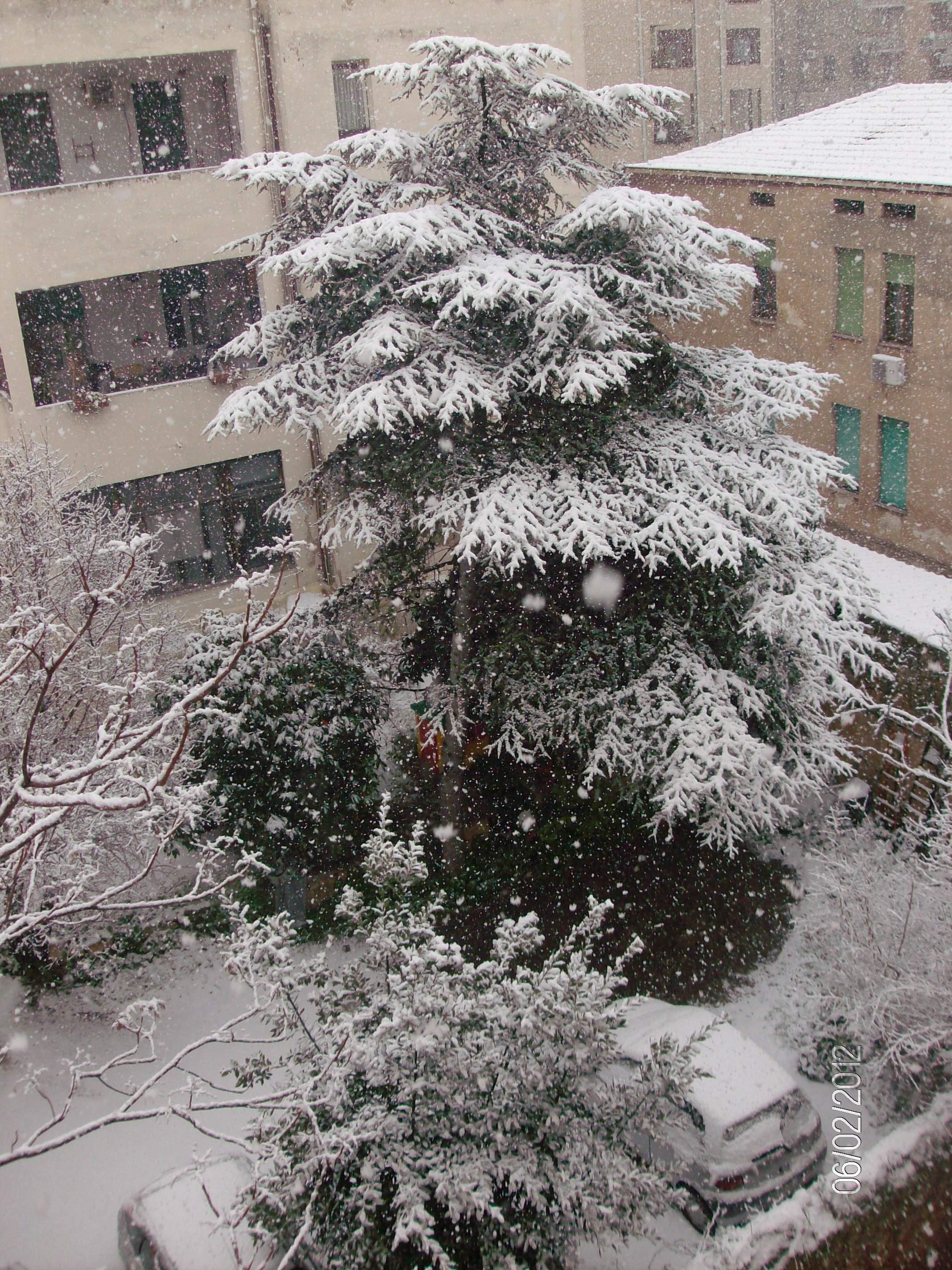 Sassari sotto la neve, zona Viale Trento, 6 febbraio 2012 dal Portale Le Vie della Sardegna
