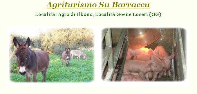 Su Barraccu Agriturismo Fattoria Didattica Loceri (OG) Offerte Pasqua e Pasquetta 2014.