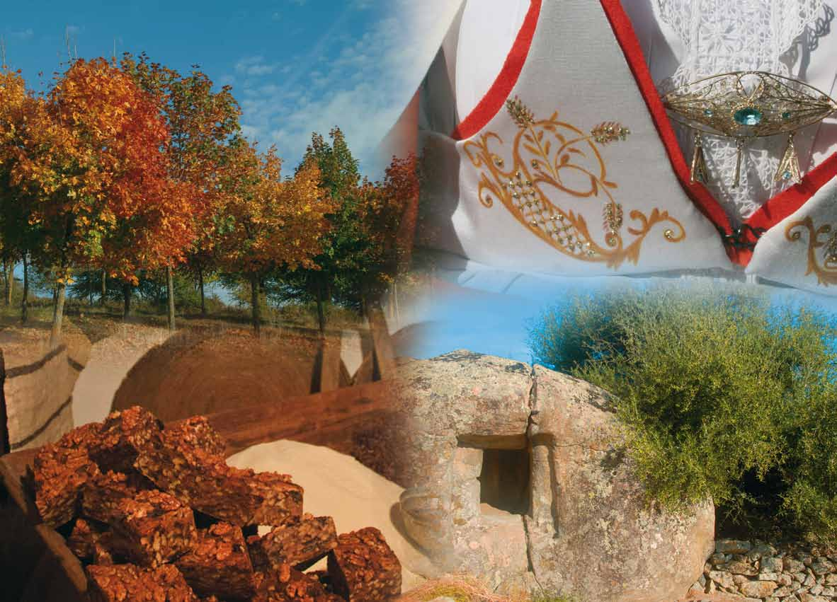Mamoiada Autunno in Barbagia 2-3-4 Novembre 2012 Sas Tappas, Cortes apertas a Mamoiada 2-3-4 novembre 2012, Sas Tappas 2-3-4 novembre 2012 Mamoiada.
