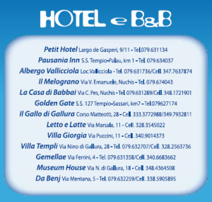 hotel b&b carnevale tempiese 2013