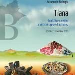 Cortes Apertas a Tiana 15 16 17 novembre 2013, Autunno in Barbagia a Tiana 2013 Gualchiere, mulini e antichi sapori d'autunno.