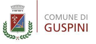Comunicato Stampa Comune di Guspini