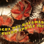 Alghero Sagra del Bogamarì 2014 dal 22 Marzo al 27 Aprile. Degustazioni e itinerari del gusto.