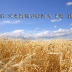 Sardegna: Campagna assicurativa contro le avversità atmosferiche come aderire.