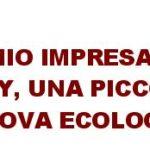 """""""BREBEY"""" UN'IMPRESA SARDA DI DECIMOMANNU VINCE IL PREMIO IMPRESA AMBIENTE ITALIA 2014 CON I PANNELLI ISOLANTI IN LANA DI PECORA"""