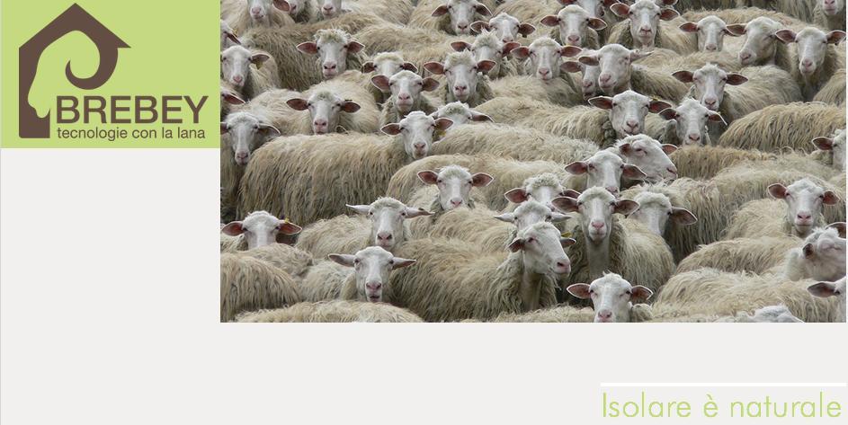 Brebey è una società cooperativa sarda creata nel 2012 per la produzione e la commercializzazione delle tecnologie basate sulla lana di pecora