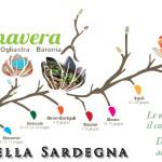 Primavera nel Marghine – Ogliastra – Baronia: dal 1° Maggio al 29 Giugno 2014