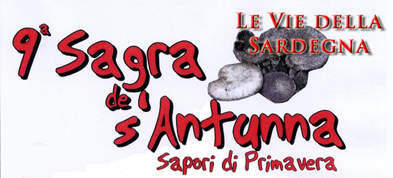Sagra di Norbello de s antunna sapori di primavera 2014 - Titolo Sagra Le Vie della Sardegna