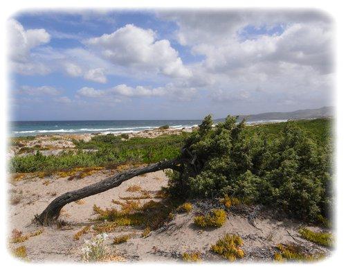 Sassari spiaggia di Platamona
