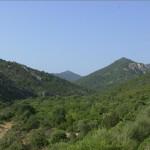 """Domenica 18 maggio """"Giornata Oasi 2014"""" Oasi WWF di Monte Arcosu – Località Sa Canna-Uta (CA)."""