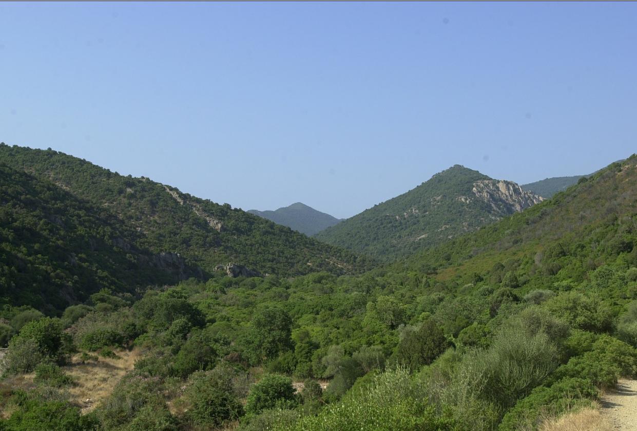 Monte Arcosu oasi Wwf