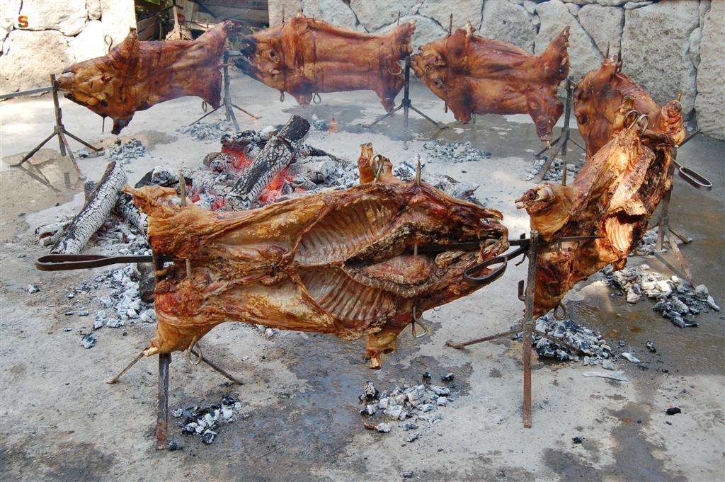 Sassari 1 giugno 2014 la Sagra del maialetto curata dalla Pro Loco di Nughedu San Nicolò