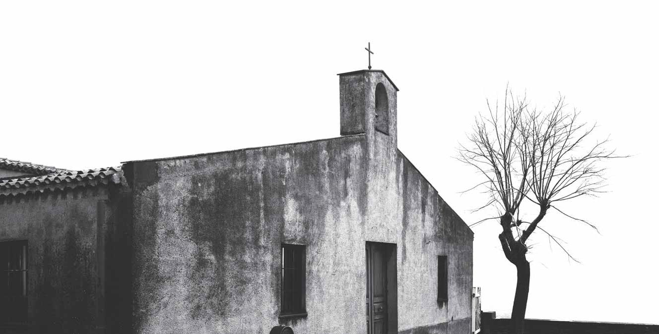 Primavera Marghine 2014 - Macomer Santa Maria di Corte