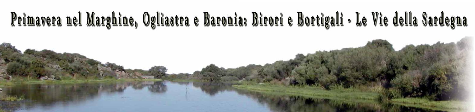 Primavera a Birori e Bortigali - Panorama