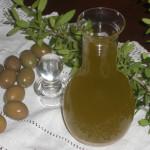 Olio extravergine di oliva adesione-mantenimento alla Dop Sardegna campagna produttiva 2014-2015.