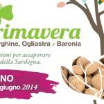 Primavera a Ilbono: 14 – 15 Giugno 2014