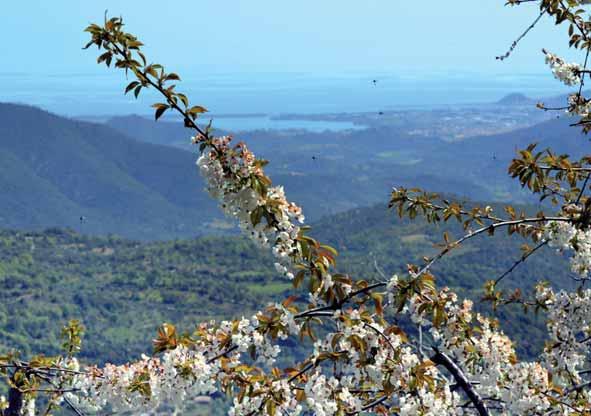 Primavera a Lanusei 2014 - vista panoramica