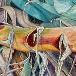 """""""TENSIONI"""" – Personale di Stefano Masili – Museo naturalistico del territorio """"G. Pusceddu"""" – dal 6 giugno al 6 luglio 2014."""