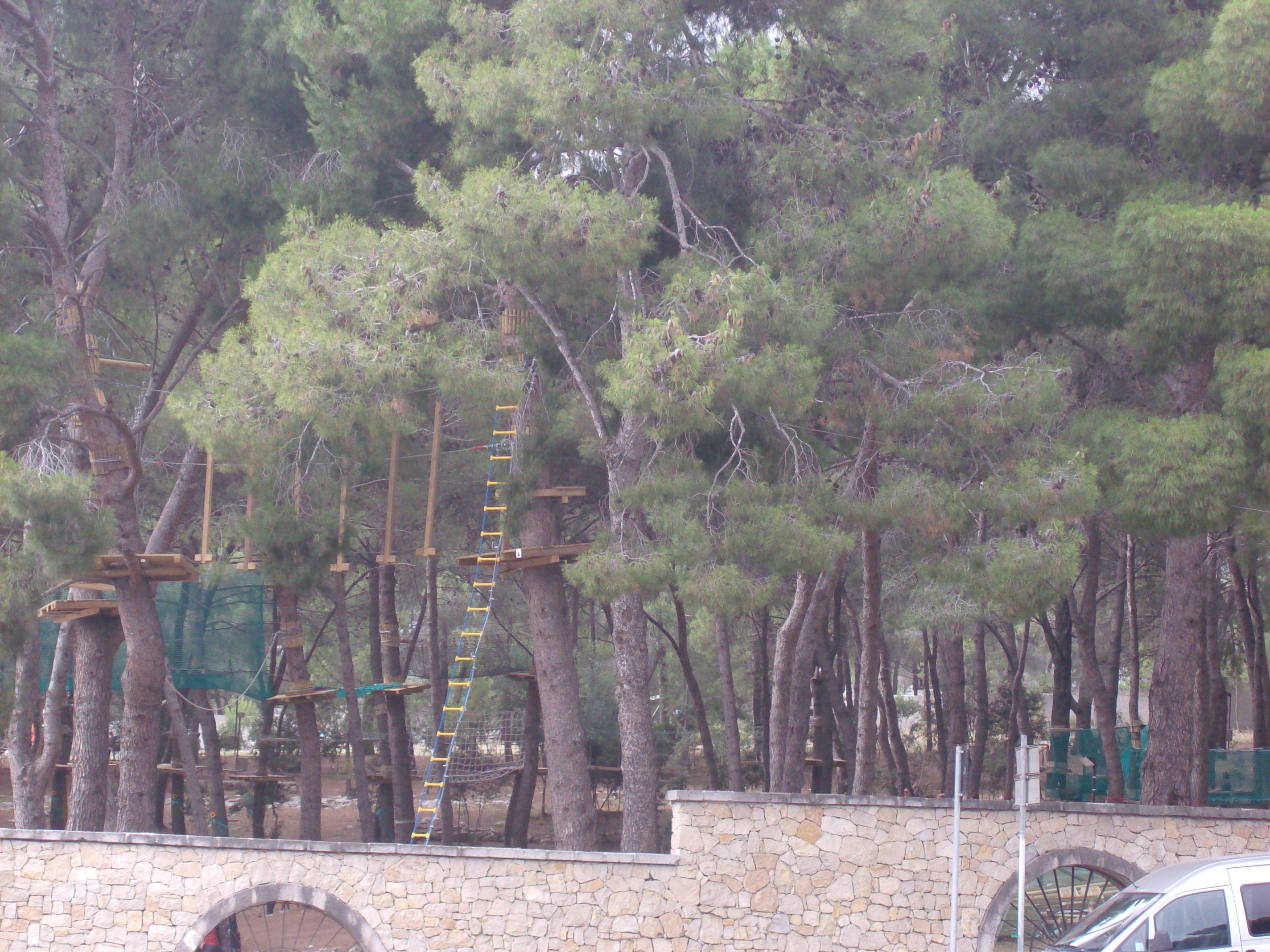 Parco Avventura di Baddimanna