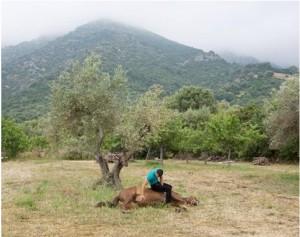 """""""Sardinian Postcards"""" Personale di fotografia di Alessandro Toscano Cagliari estate 2014"""