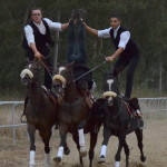 Pariglie Mogoresi: Uno spettacolo di evoluzioni equestri.