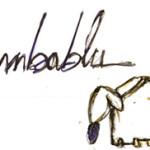 """Convegno """"Limbablu"""" a Cagliari martedì 4 novembre 2014 presso il T Hotel."""