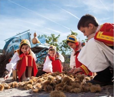 La Montagna Produce Desulo 2014