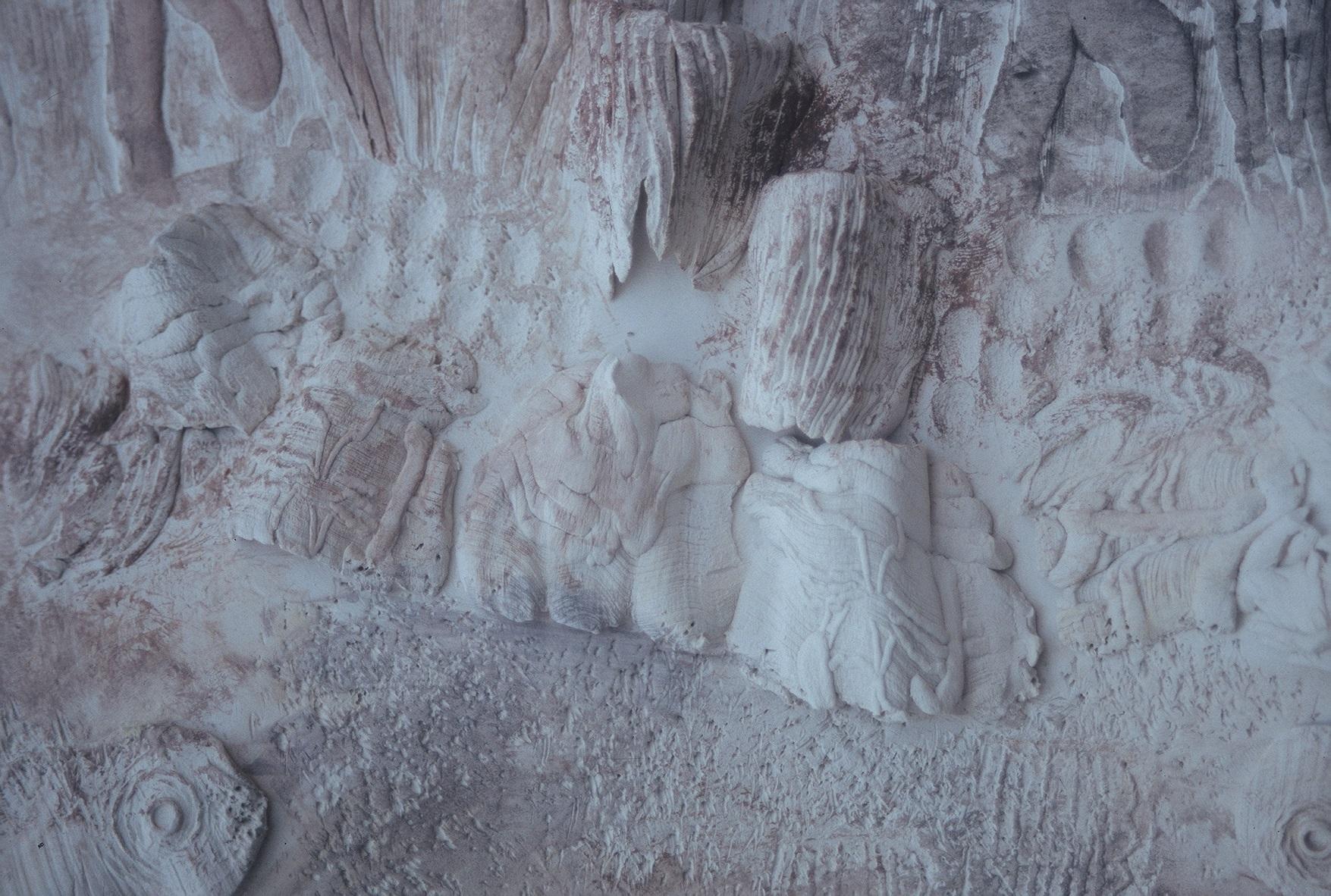 """Retrospettiva e inediti di Nicola e Antonello Atzori dal 03 ottobre al 02 novembre 2014 Museo naturalistico del territorio """"G. Pusceddu"""""""