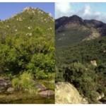 Istituzione del parco regionale Gutturu Mannu e del parco regionale di Tepilora.