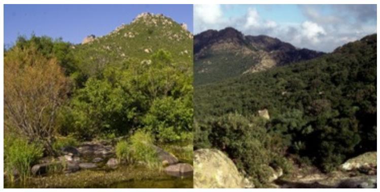 Istituzione del parco regionale Gutturu Mannu e del parco regionale di Tepilora ottobre 2014