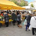 Al via Campagna amica in Piazza Tola a Sassari. Ieri mattina primo appuntamento in centro con i prodotti a km zero.