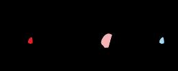 Sartiglia logo 2015