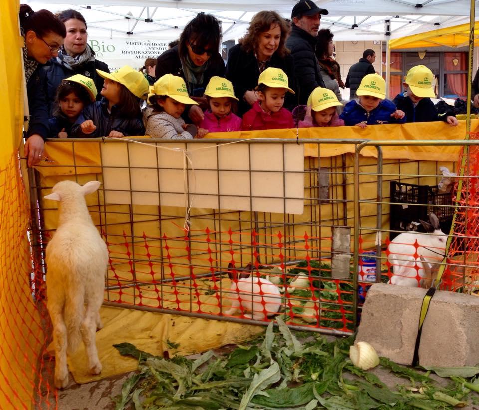 Sassari Li Punti venerdì 27 marzo 2015 il mercato di Campagna Amica si trasforma in una Fattoria Didattica.