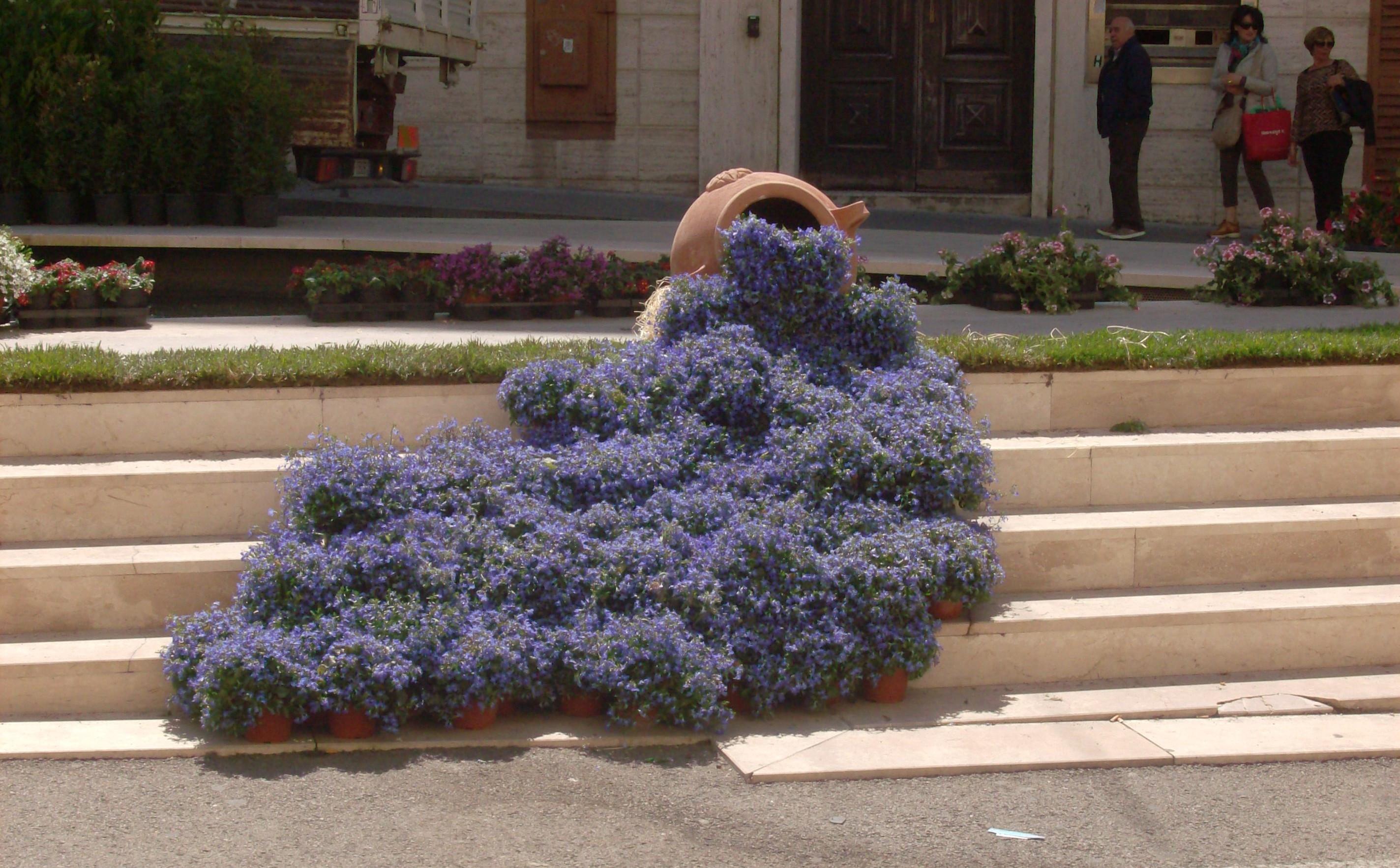 """""""Il Centro in… Fiore"""" a Sassari le novità dell'edizione 2015."""