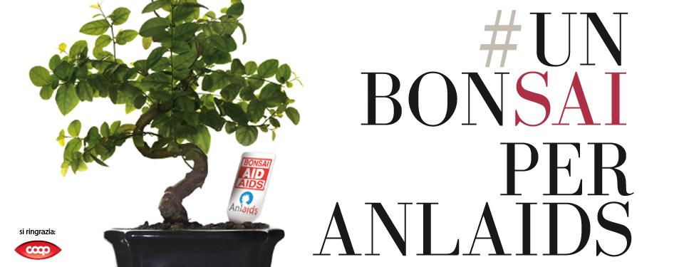Un bonsai per l'ANLAIDS - Sabato 4 Aprile la Consulta giovani del Comune di Oristano in piazza Eleonora per raccogliere fondi contro l'HIV.