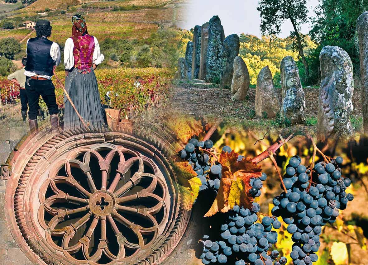 """Le premiazioni del Concorso Enologico """"Wine & Sardinia"""" seconda edizione sono previste a Sorgono il 26/27 ottobre in occasione di Autunno in Barbagia """"Sa 'innenna"""" 2015."""